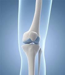 bone health_210