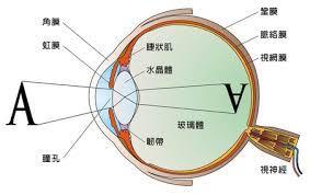 eye 9_283