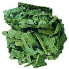 green propolis 3